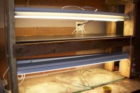 How to Build a Grow Rack for Seed Starting
