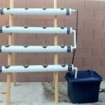 How I Built My DIY Hydroponics System