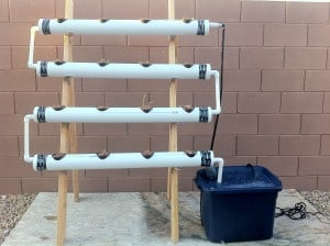 How I Built My DIY Hydroponic System and Hydroponic Garden