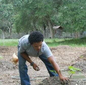 Gardening for Prepping