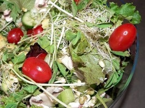 Beating Food Challenges: Sprouting and Foraging