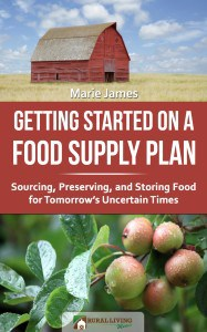 cover Getting Started Food Supply Plan AMZ