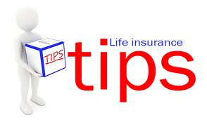 homesteaders life insurance