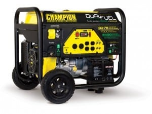Everyone Loves A Champion Generator