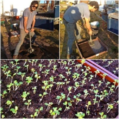 Modern Homesteading For Beginners Become Less Dependent