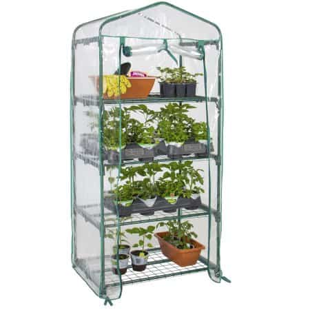 small indoor greenhouse
