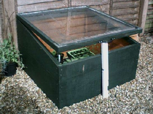 mini box greenhouse