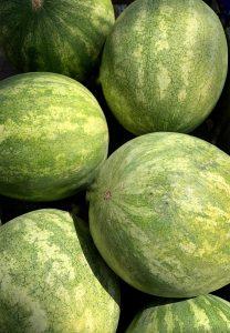 Growing Watermelon ~ How to Grow Watermelon