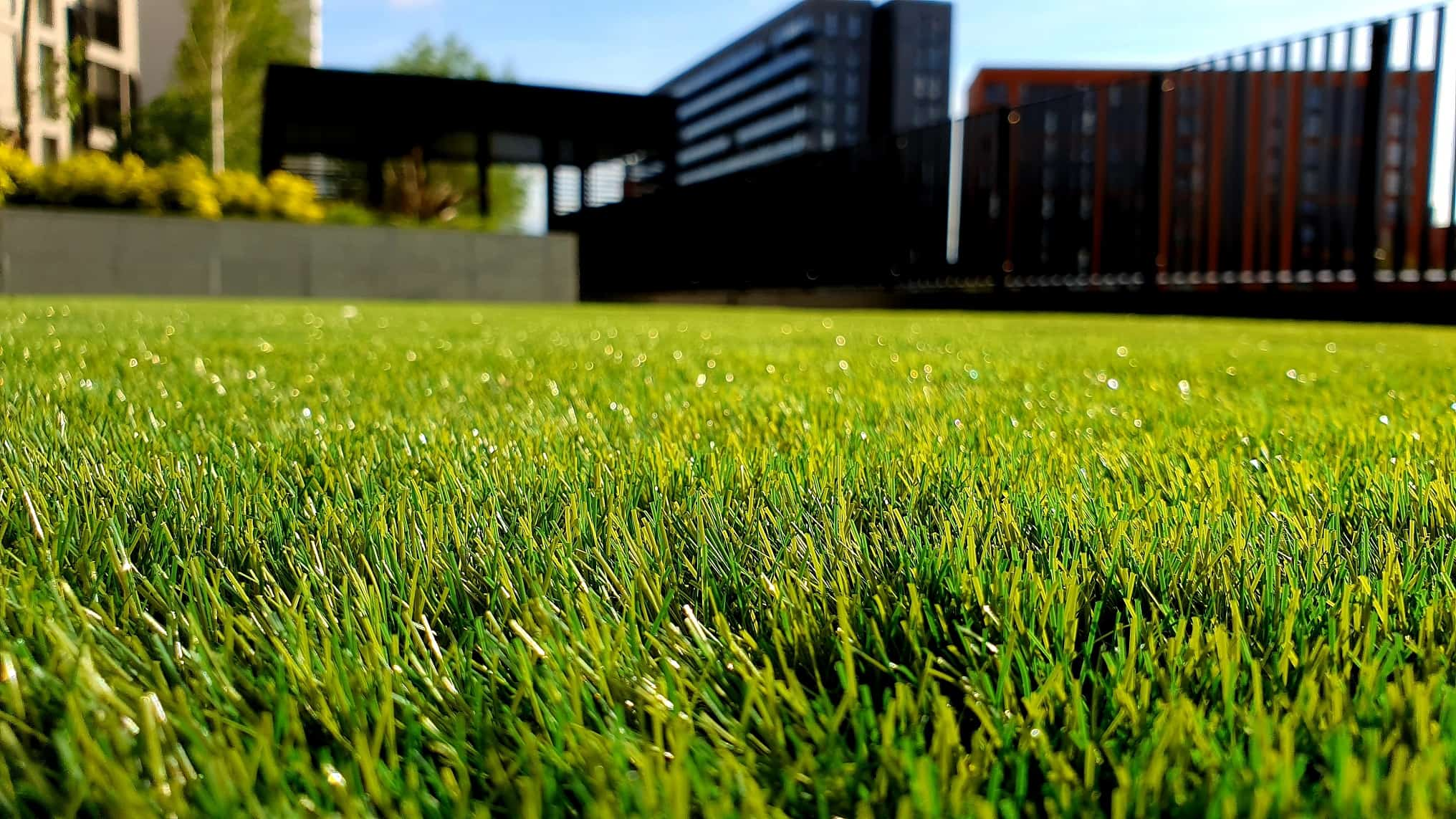 Starting and Growing Your Lawn Care Business
