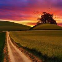 Beautiful hills and sunset