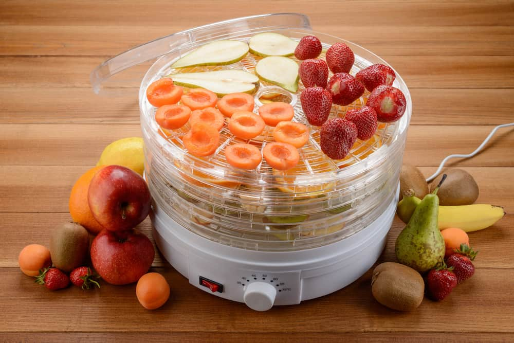 best food dehydrators