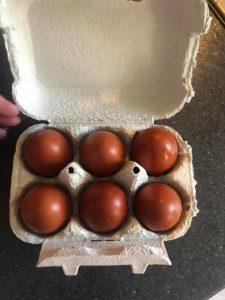 Black copper maran eggs