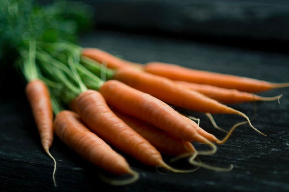 Carrots easy-growing vegetables