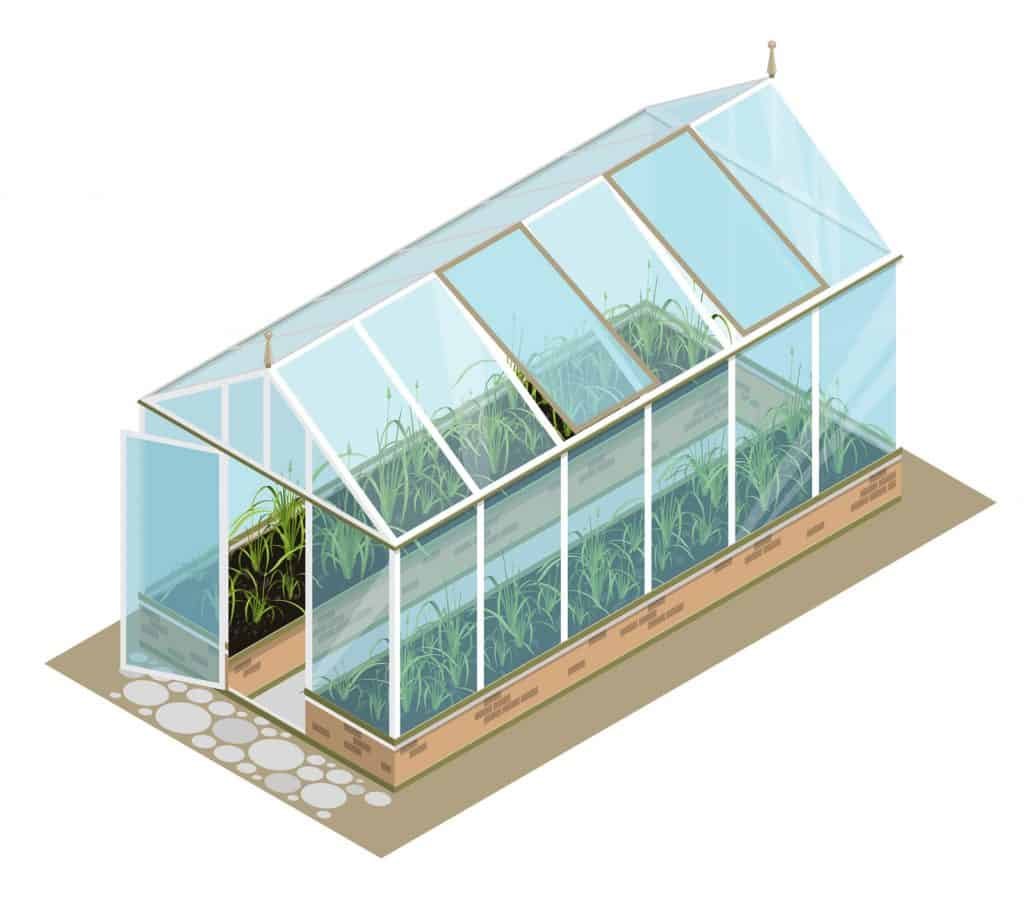 Greenhouse Design Guide For The Perfect Greenhouse