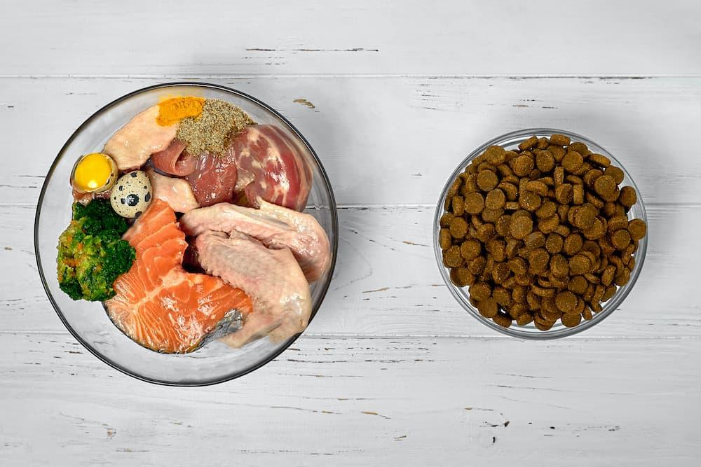 how to make homemade dog food