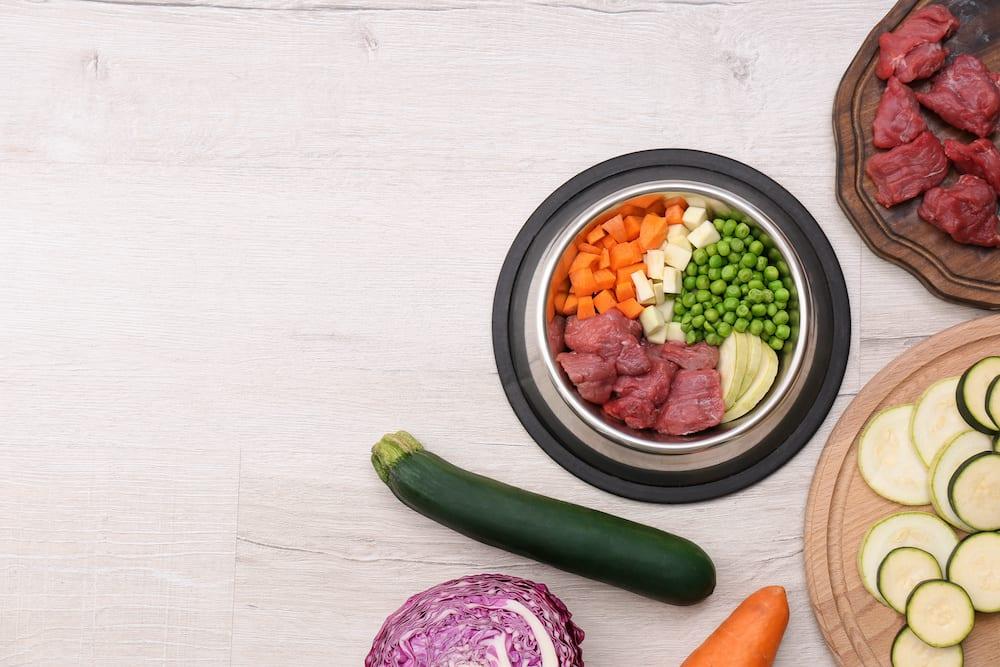 how to make dog food